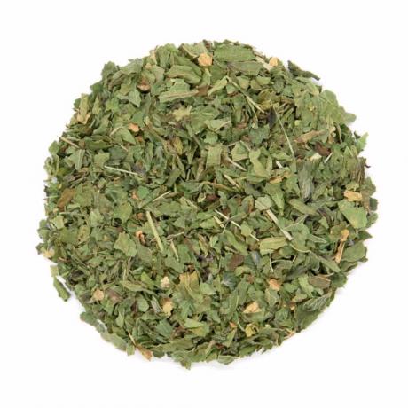 Jade walker nettle tea