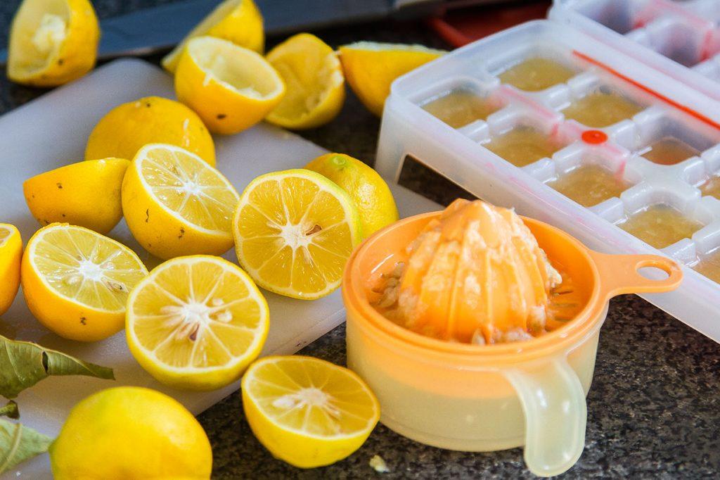 Lemon ice cubes Jade Walker