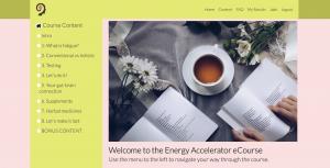 Energy Accelerator Course Copy